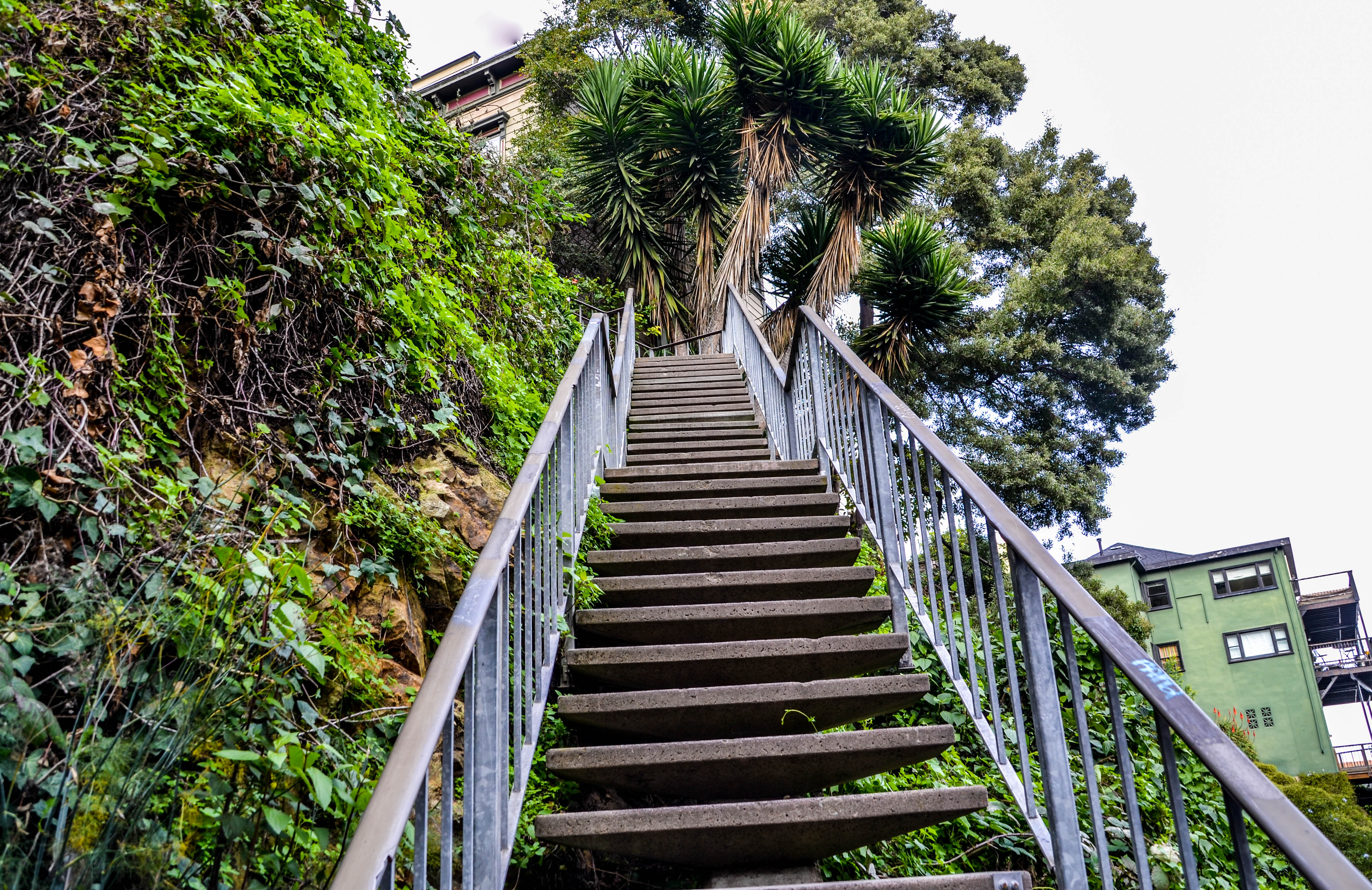 Coit Tower Filbert Steps