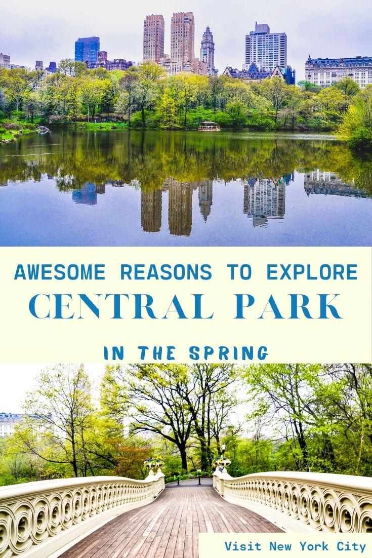 Central Park New York Spring - Exploringrworld.com