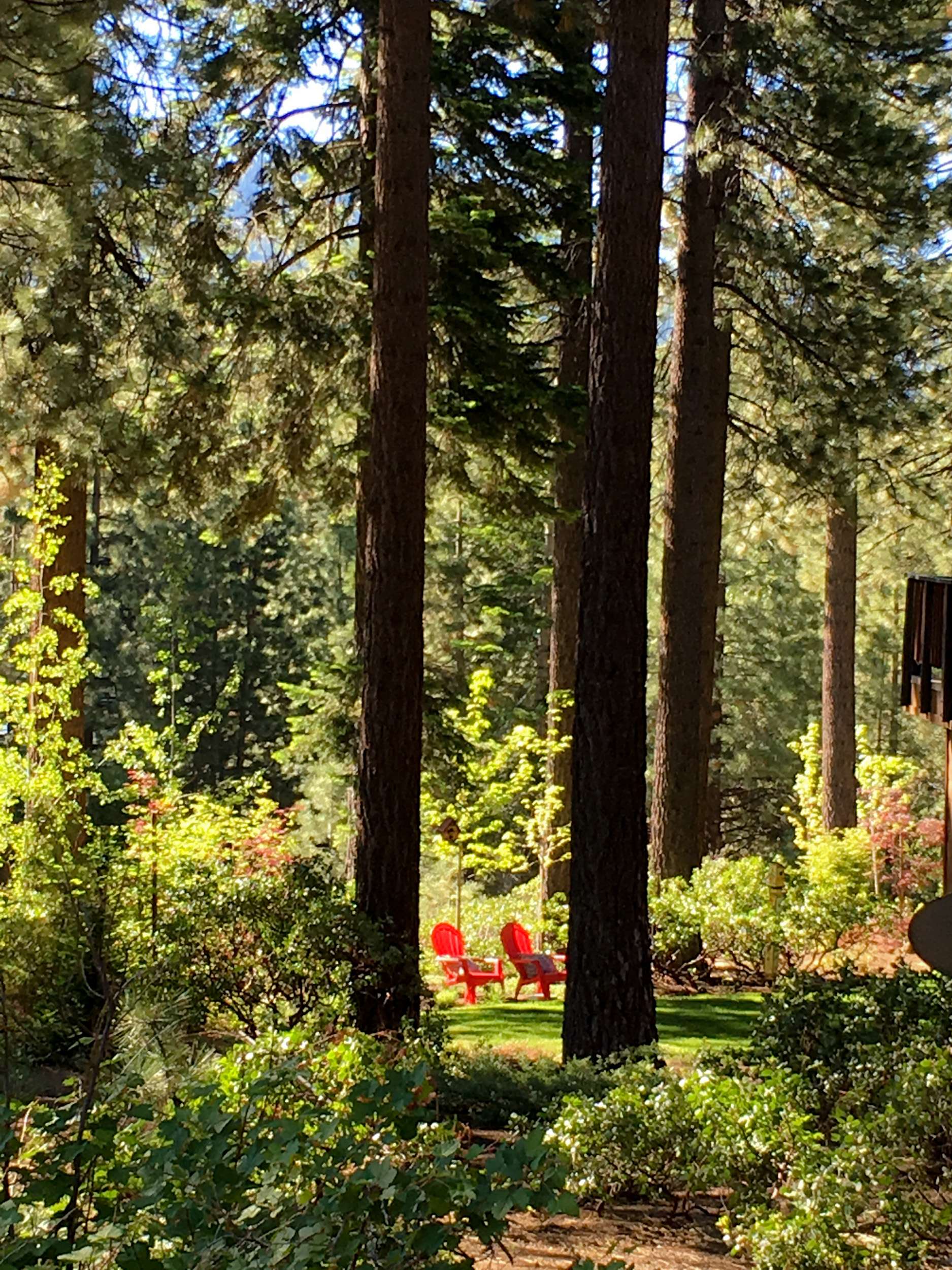 Lake Tahoe Airbnb
