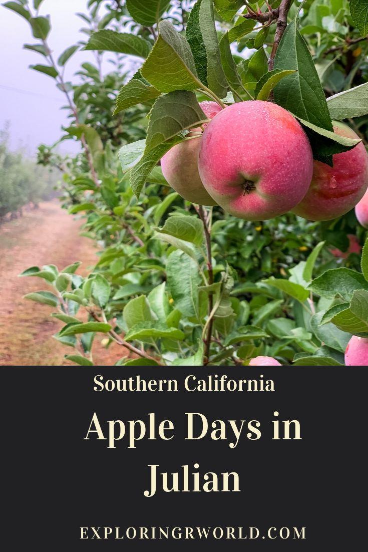 Apple Days Julian California - Exploringrworld.com