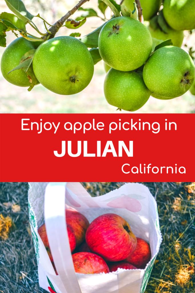 Julian Apple Picking California - Exploringrworld.com