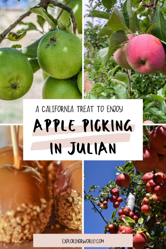 Julian California Apples - Exploringrworld.com