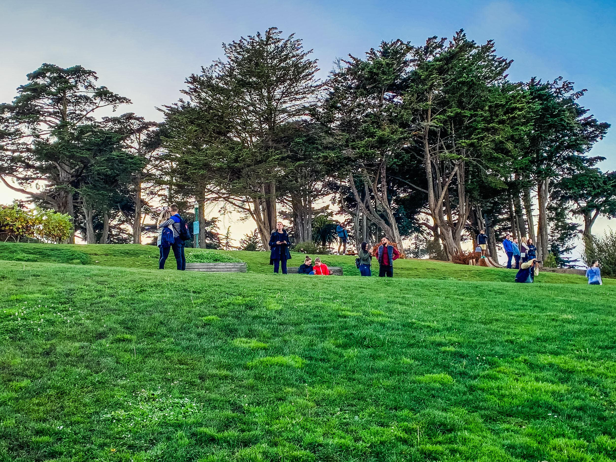 San Francisco Alamo Park