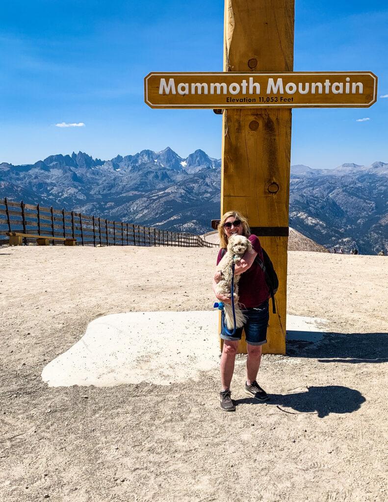 Mammoth Gondola view